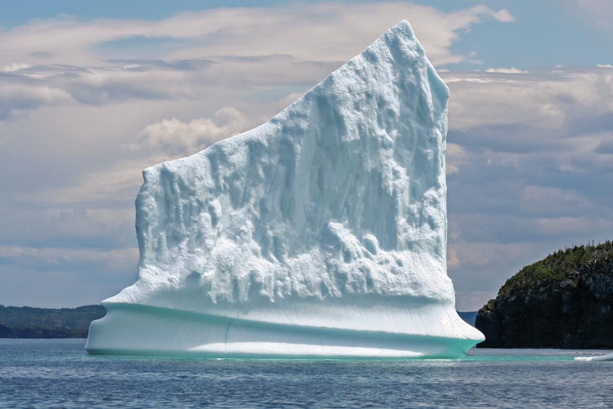 whale ice 3