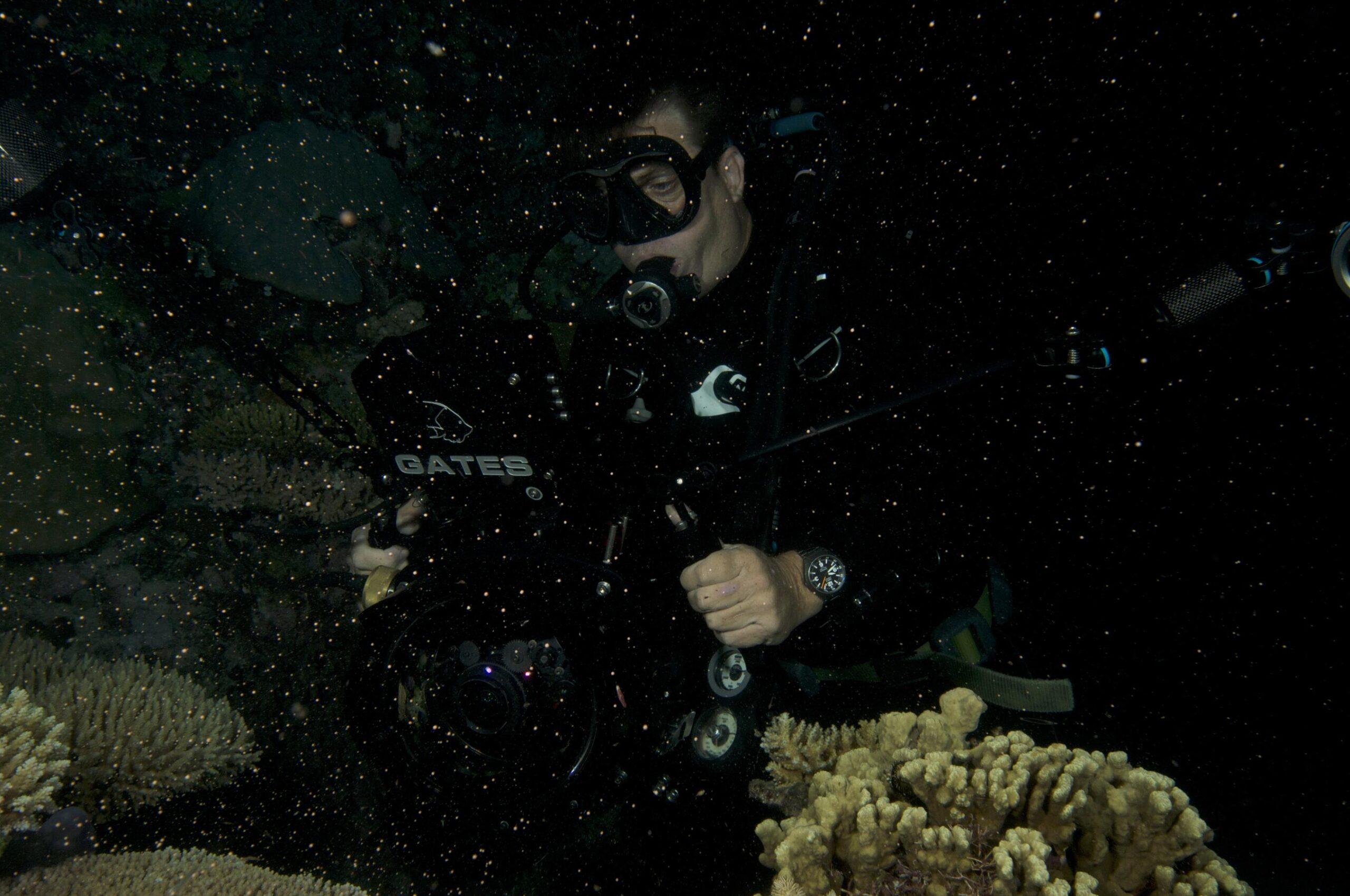Coral Spawning in Tropical North Queensland_credit Biopixel TV (9)