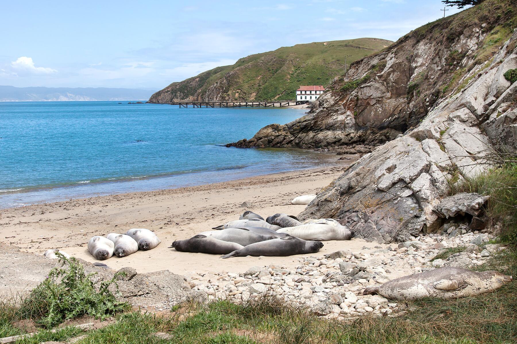 San Francisco to Point Reyes National Seashore & Tomales Bay, California