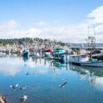 Brookings to Newport, Oregon