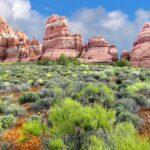 Canyonlands National Park: Island in the Sky to Canyonlands National Park: The Needles, Utah