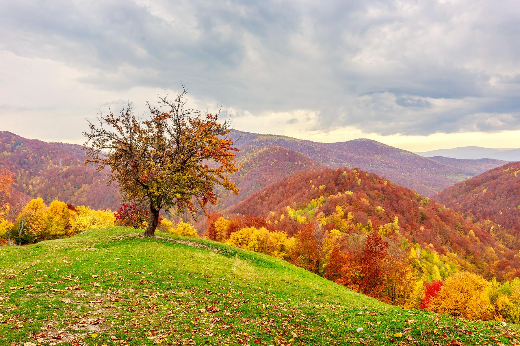 15 Unexpected Places With Great Fall Foliage