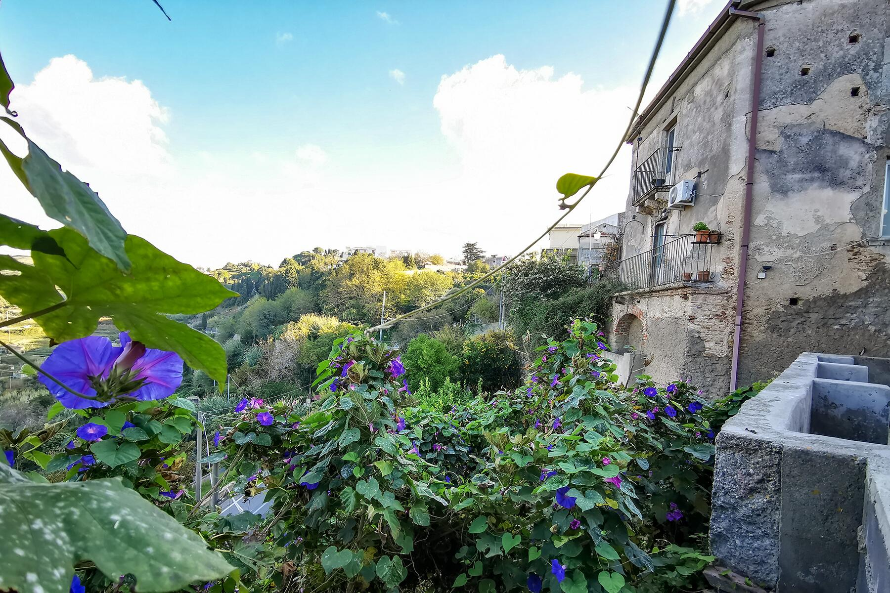 Gesso's house is covered in lush vegetation c Silvia